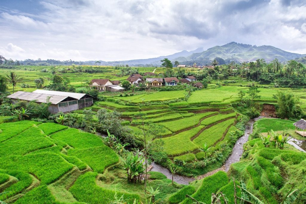 Индонезия виза для россиян 2021 нужна или нет