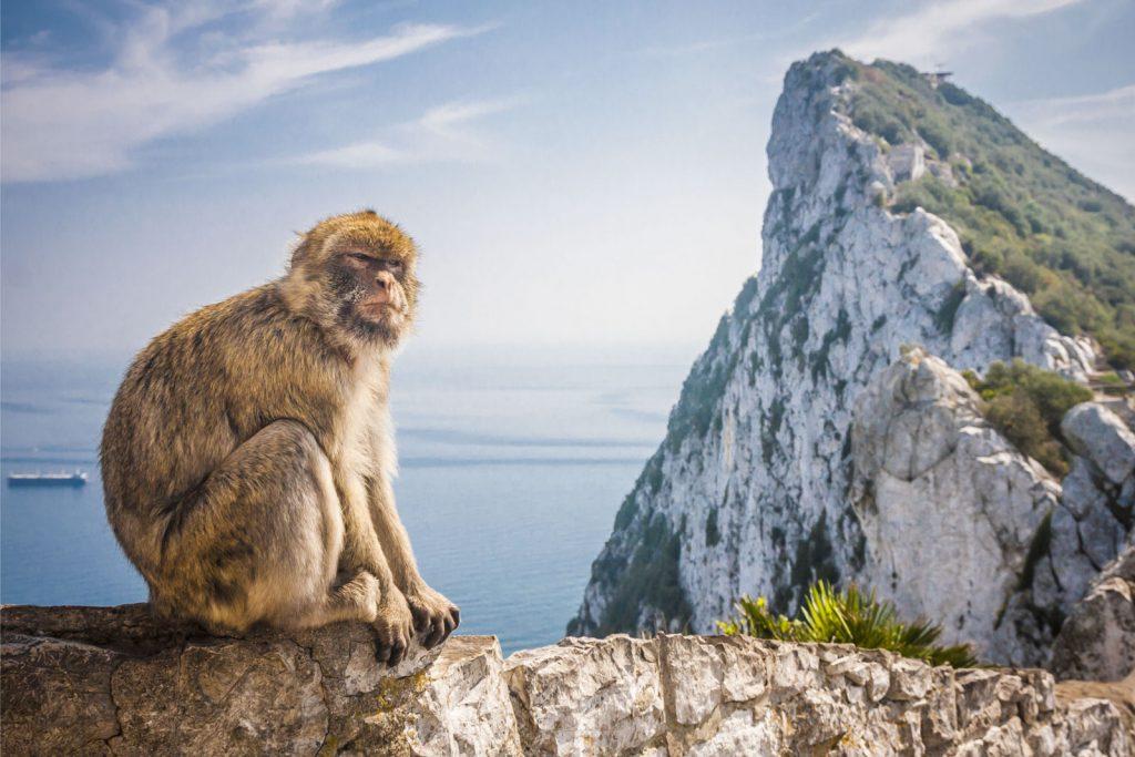 Какие документы нужны для поездки в Гибралтар?