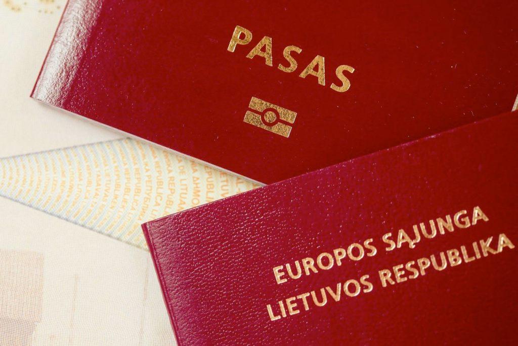 Гражданство Литвы — инструкция по получению в [y] году