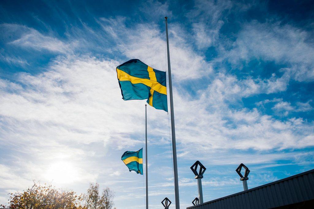 Можно ли в Швеции иметь двойное гражданство?